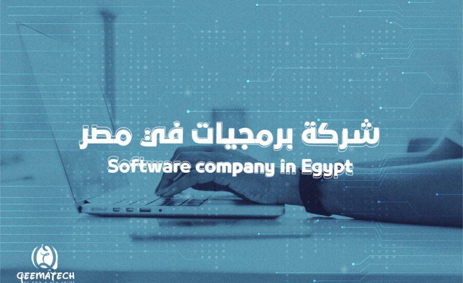 شركة برمجيات في مصر